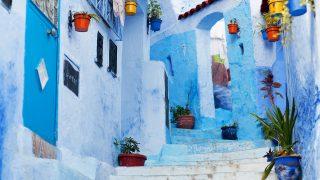 モロッコヨーグルの語源・由来・意味