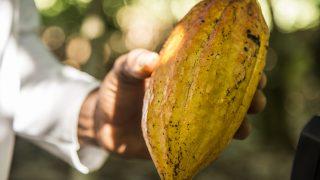 ガーナチョコレートの語源・由来・意味